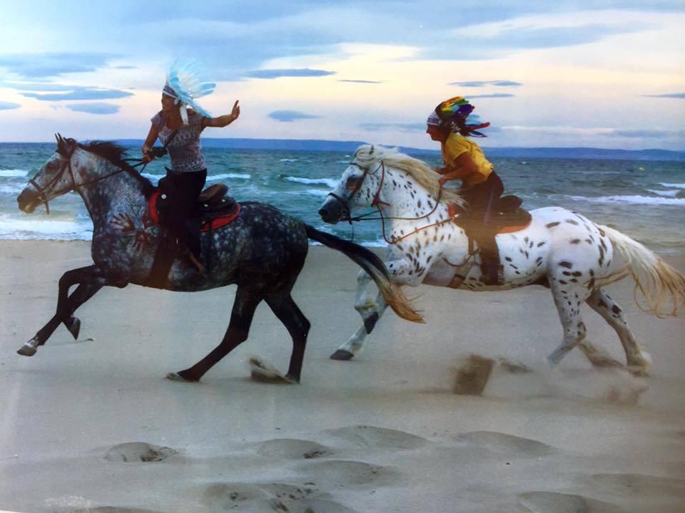 7505a91471c9 Balade à cheval de 2h sportives pour cavalier confirmé en Camargue ...